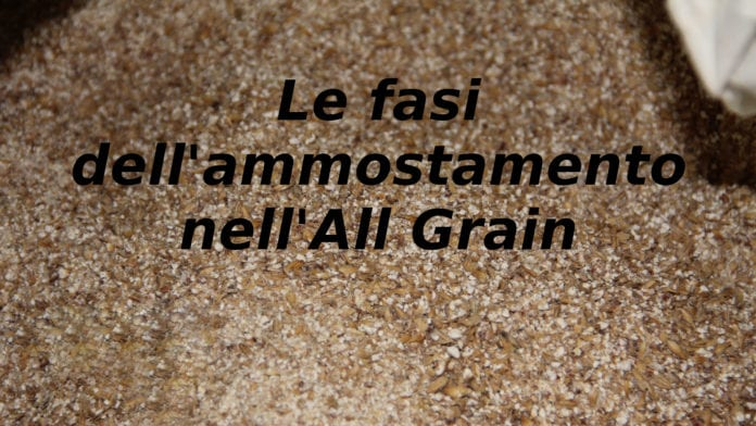fasi ammostamento all grain