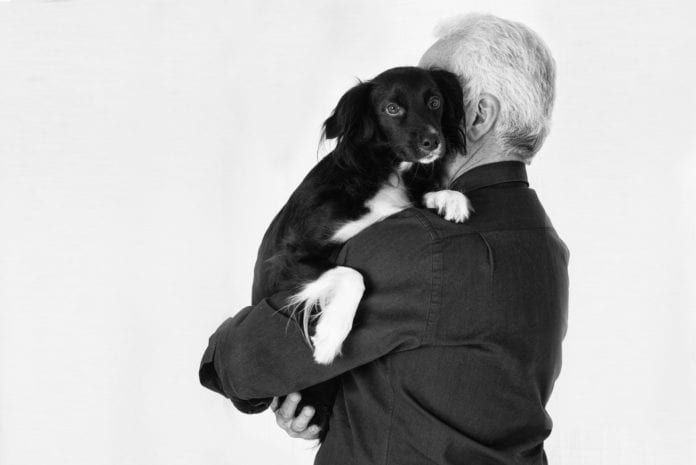 adozione cani