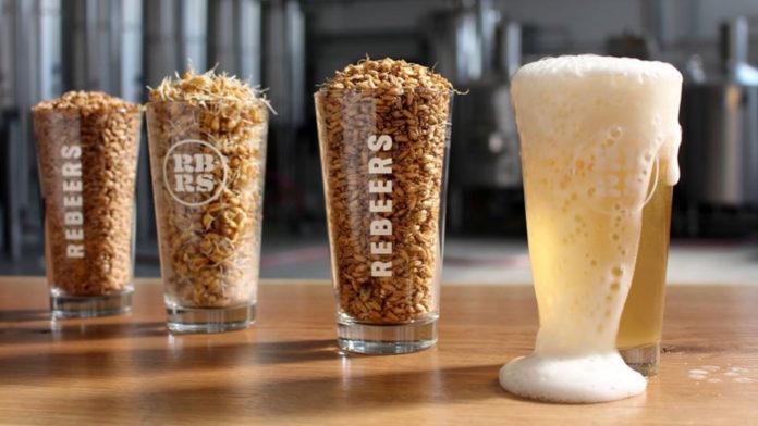 Fovea: La prima birra di grano duro 100% italiano!