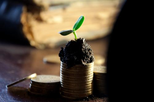 monete e germoglio per economia sostenibile