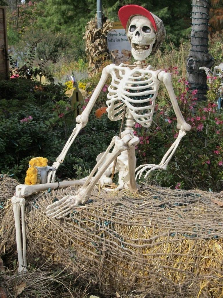scheletro con birra