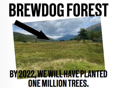 Brewdog Forest