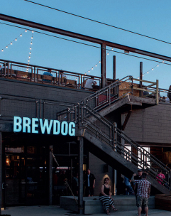 negozo brewdog