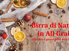 Birra di Natale (Christmas Ale) in All Grain: la ricetta per realizzarla in casa