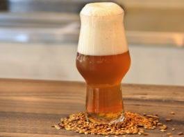 American Wheat Ale: Lo stile a stelle e strisce dall'animo elegante e gentile